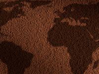 Кофе Illy как ритуал: путешествие вокруг света